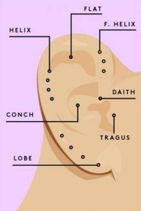 Ear map