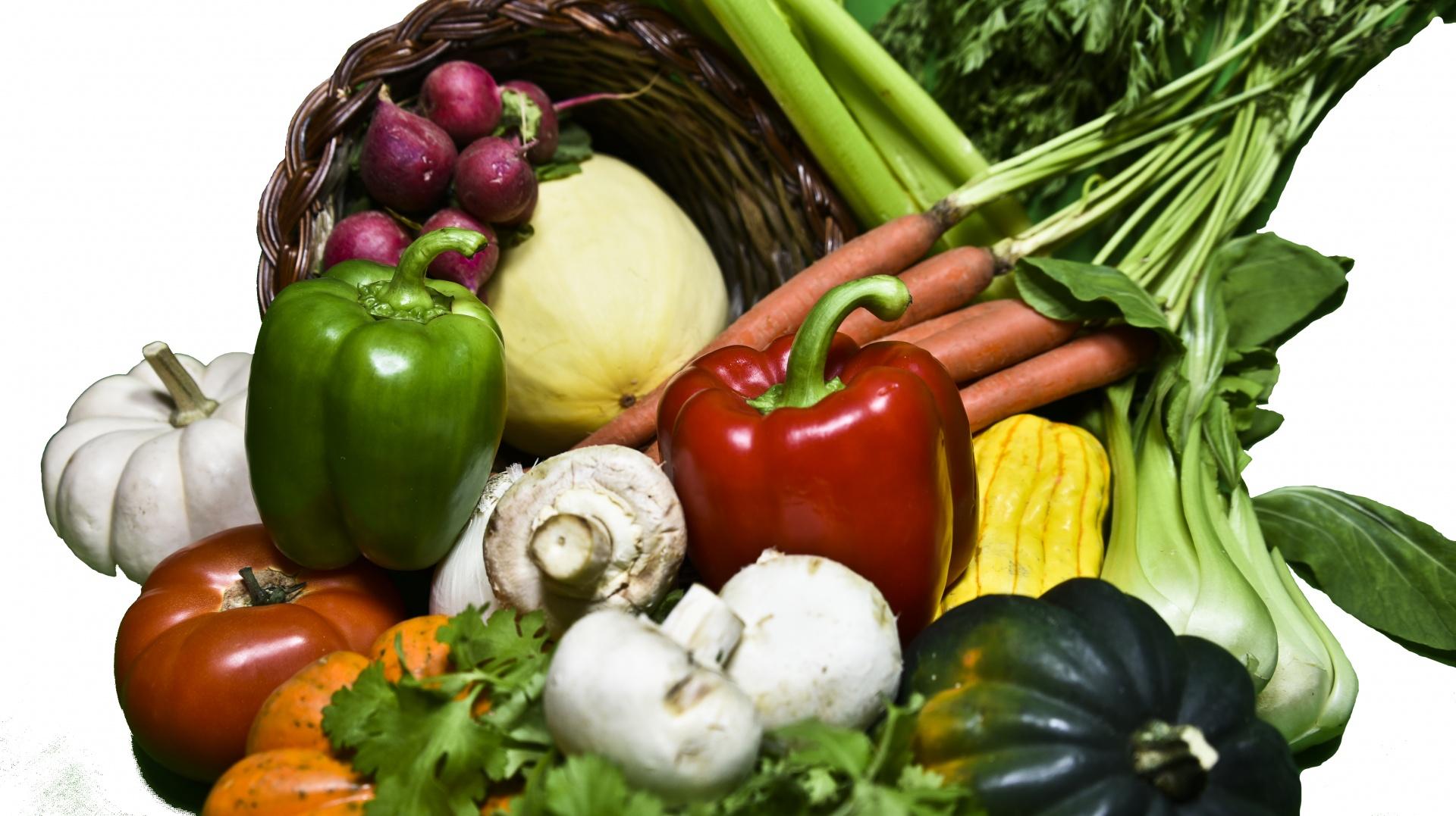 cornucopia-of-vegetables