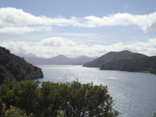 009 Marlborough Sounds, Picton