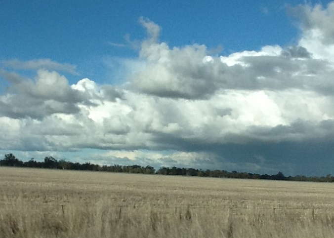 Grassy plains stretch for miles and miles.