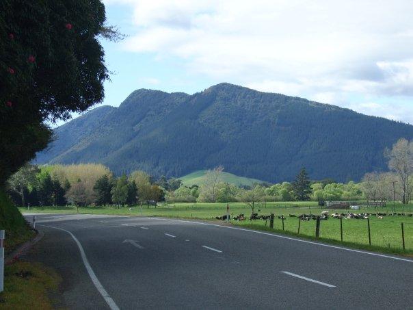 013 Rai Valley